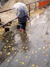 Fotowettbewerb: Wie seht ihr den Herbst? - Abstimmung