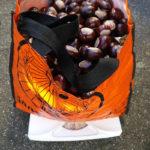 Mitmachaktion: Sammelt Kastanien und gewinnt!